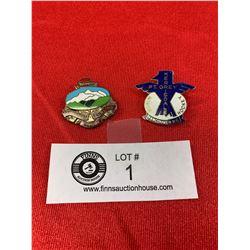 2 Vintage Enamel Pins
