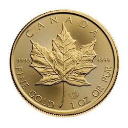 2020 Royal Canadian Mint Gold Maple Leaf. .9999 Fine Gold, 1oz. Collector Bullion.