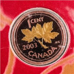 RCM 2003 Annual Report with Coin