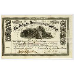 Driggs Drainage Co. 1872 Stock Certificate