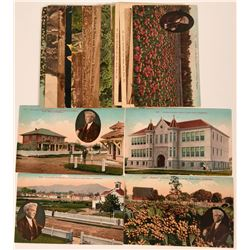 Luther Burbank Post Cards  (115191)