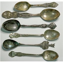 Souvenir Silver Spoon Collection  (114953)