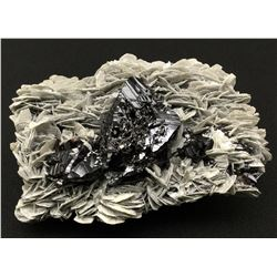 Cassiterite and Muscovite from China  (53070)