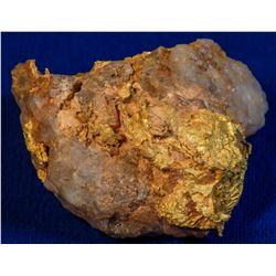 Gold and Quartz Specimen 6  (114146)