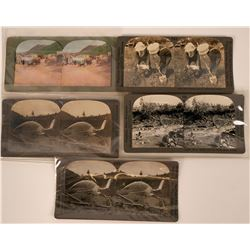 Stereoview Photos of gold mining   (115196)
