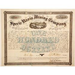 Specie Basis Mining Co. bond  (91027)