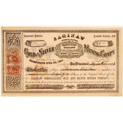 Saginaw Consolidated Gold & Silver Mining Co. Stock Certificate  (107726)