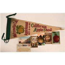 1911 Apple Show Postcards & Pennant  (115557)