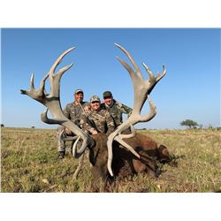 5 day hunting trip with 1 black buck, 1 Feral Goat and 1 Wild Boar for 3 hunters in La Pampa