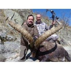 5 Day Hunt in Spain 1 Hunter