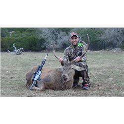 Texas Trophy Exotic Hunt for 2-5 Hunters