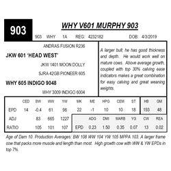 WHY V601 MURPHY 903
