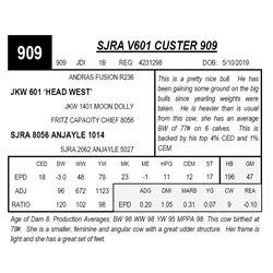 SJRA V601 CUSTER 909