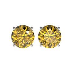 2.50 ctw Certified Intense Yellow Diamond Stud Earrings 10K White Gold