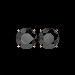 5 ctw Fancy Black Diamond Solitaire Stud Earrings 10K Rose Gold