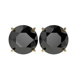 5.15 ctw Fancy Black Diamond Solitaire Stud Earrings 10K Yellow Gold