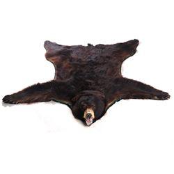 Washington Trophy Black Bear Fur Rug