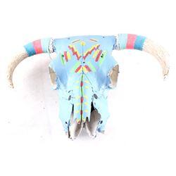 Native American Painted Steer Skull
