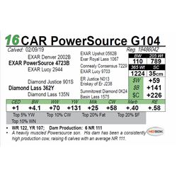 CAR PowerSource G104