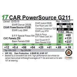 CAR PowerSource G211