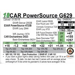 CAR PowerSource G629