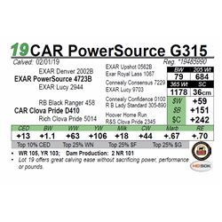 CAR PowerSource G315