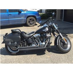 RESERVE LIFTED ! 2010 HARLEY DAVIDSON FAT BOY LO