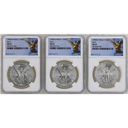 Lot of 1982Mo/1983Mo/1985Mo Mexico Libertad Onza Silver Coins NGC MS67