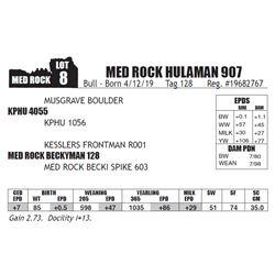 MED ROCK HULAMAN 907