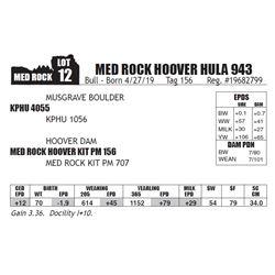 MED ROCK HOOVER HULA 943