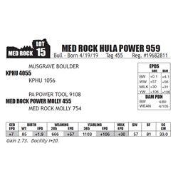 MED ROCK HULA POWER 959