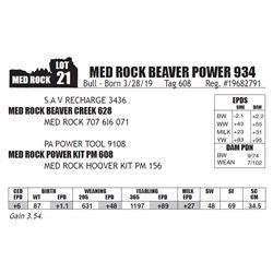 MED ROCK BEAVER POWER 934