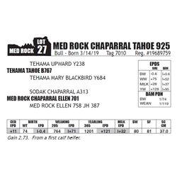 MED ROCK CHAPARRAL TAHOE 925