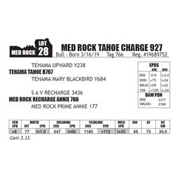 MED ROCK TAHOE CHARGE 927