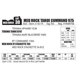 MED ROCK TAHOE COMMAND 975