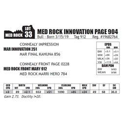 MED ROCK INNOVATION PAGE 904