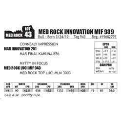 MED ROCK INNOVATION MIF 939