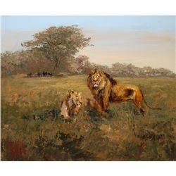 "Mark King  ""King of the Realm""  nature, African lions"
