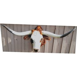 nice full steer head mount