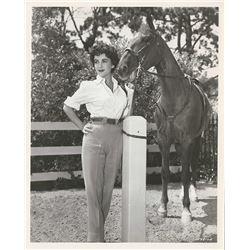 ELIZABETH TAYLOR 1953 VINTAGE MGM PHOTO