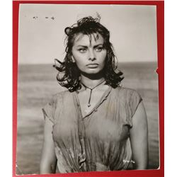SOPHIA LOREN VINTAGE PHOTO.