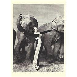 RICHARD AVEDON SIGNED 'Dovima With Elephants', Dior, Paris, 1955 card.