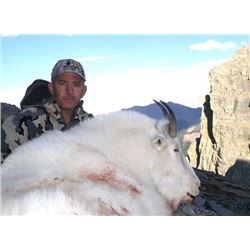 BC Mountain Goat Combo Hunt, includes additional hunter for Elk, Mule deer, Bear and Wolf