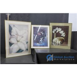 ** (3) Framed Pictures
