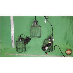 Lights with Chicken Wire (Set of 3) : From Toys & Treasures, Wainwright, AB