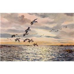 Hugh Monahan | High Tide Afternoon Canvasbacks