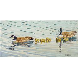 Robert Lougheed   Family of Geese