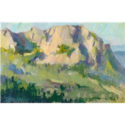 Mimi Litschauer   Pinnacle Peak View