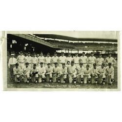 1930 Washington Senators Large Photograph