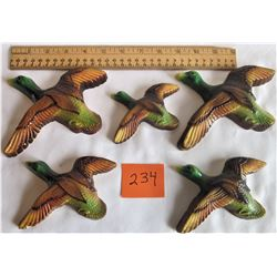 5 DUCK WQALL HANGINGS